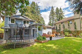 Photo 29: 2535 EDGEMONT BOULEVARD in North Vancouver: Edgemont House for sale : MLS®# R2490375