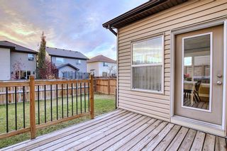 Photo 4: 1100 Brightoncrest Green SE in Calgary: New Brighton Detached for sale : MLS®# A1060195