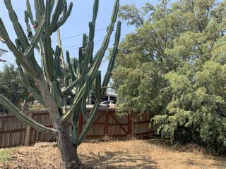 Photo 2: SAN MARCOS House for sale : 2 bedrooms : 2310 Bella Vista dr in vista