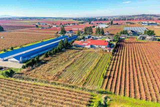 Photo 20: 190 DEFEHR Road in Abbotsford: Aberdeen Agri-Business for sale : MLS®# C8036607