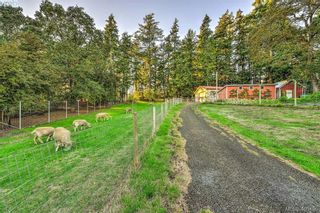 Photo 18: 4520 Markham St in VICTORIA: SW Beaver Lake House for sale (Saanich West)  : MLS®# 798977