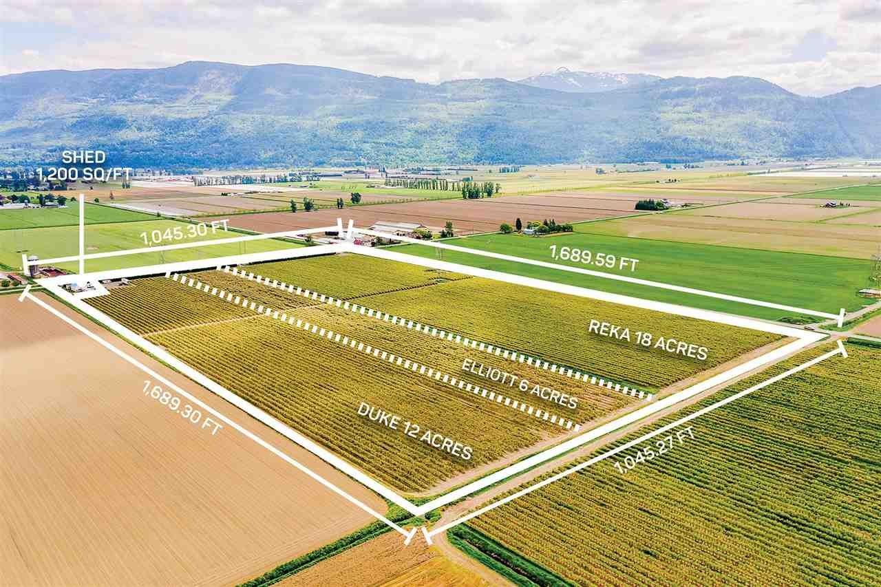 Main Photo: 4081 DIXON Road: Agri-Business for sale in Abbotsford: MLS®# C8038207