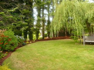 Photo 30:  in Surrey: Home for sale