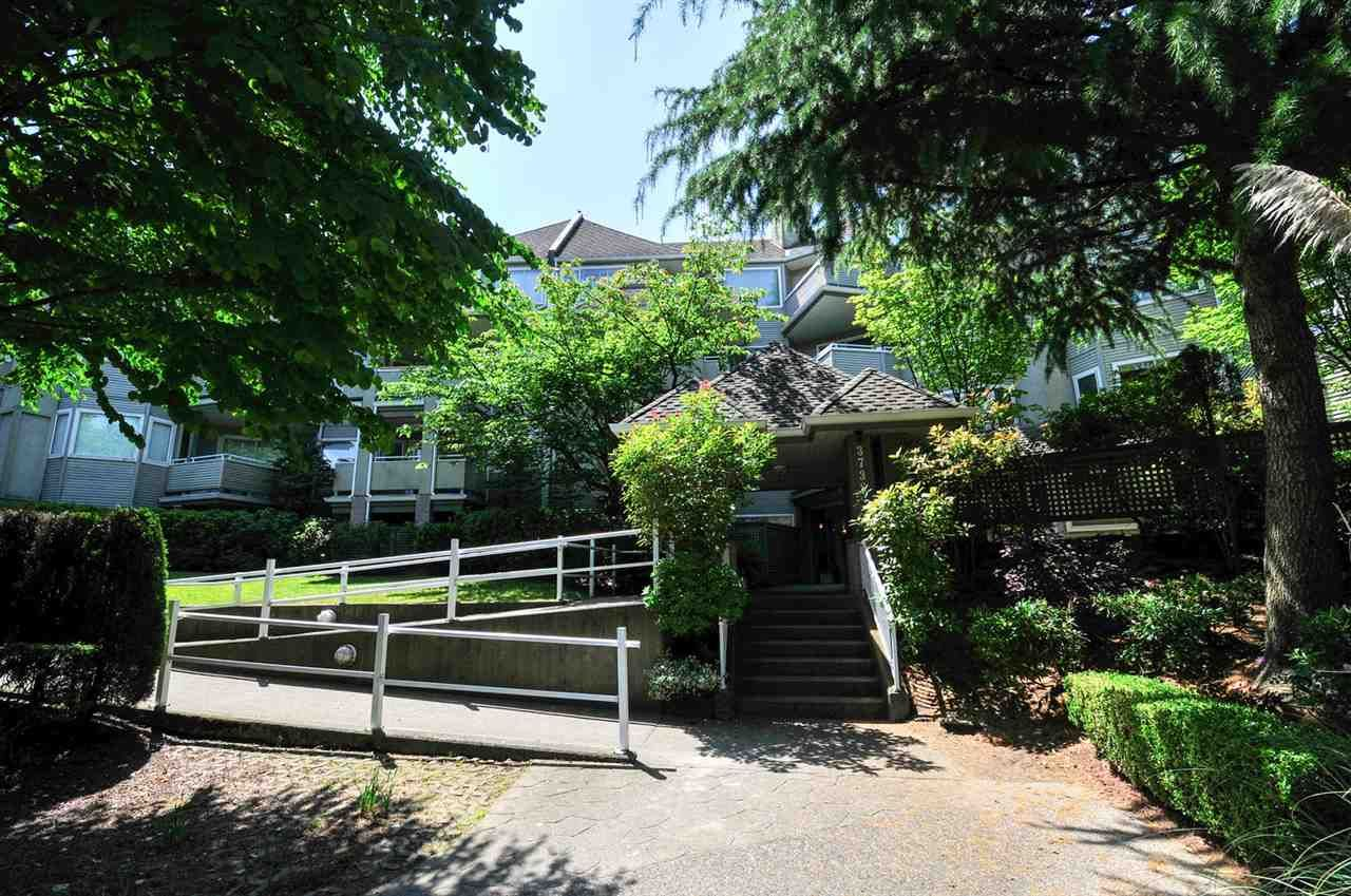 """Main Photo: 111 3738 NORFOLK Street in Burnaby: Central BN Condo for sale in """"THE WINCHELSEA"""" (Burnaby North)  : MLS®# R2074428"""