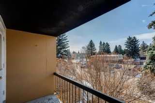 Photo 7: 211 7007 4A Street SW in Calgary: Kingsland Apartment for sale : MLS®# A1086391