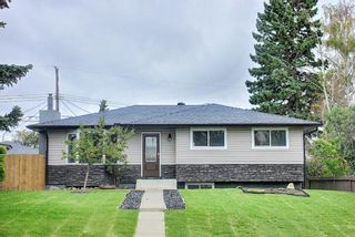 Main Photo: 820 Avonlea Place SE in Calgary: Acadia Detached for sale : MLS®# A1140668