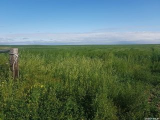 Photo 6: Duckworth Ranch in Rodgers: Farm for sale (Rodgers Rm No. 133)  : MLS®# SK856761
