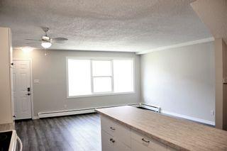 Photo 8: 13 13570 38 Street in Edmonton: Zone 35 Townhouse for sale : MLS®# E4263571