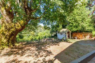 Photo 16: 3834 Quadra St in : SE High Quadra House for sale (Saanich East)  : MLS®# 792814