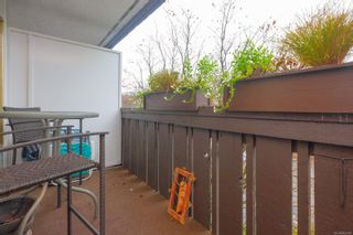 Photo 19: 303 964 Heywood Ave in : Vi Fairfield West Condo for sale (Victoria)  : MLS®# 862438