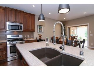 Photo 4: 100 CHAPARRAL VALLEY Terrace SE in Calgary: Chaparral House for sale : MLS®# C4086048