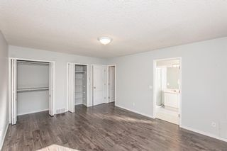 Photo 31: 186 Coral Springs Boulevard NE in Calgary: Coral Springs Detached for sale : MLS®# A1146889
