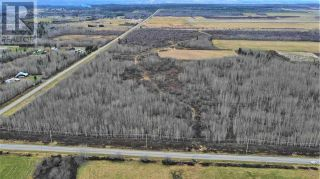 Photo 13: 5675 BLACKBURN ROAD in PG Rural South (Zone 78): Vacant Land for sale : MLS®# C8034975