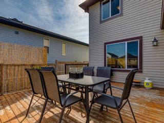 Photo 47: 1350 PRAIRIE SPRINGS Park SW: Airdrie Detached for sale : MLS®# A1037776