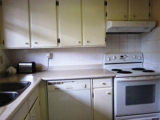 Photo 5: 103 3136 KINGSWAY Street in Vancouver East: Collingwood VE Home for sale ()  : MLS®# V944942