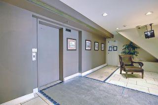 Photo 36: 303 9131 99 Street in Edmonton: Zone 15 Condo for sale : MLS®# E4238517