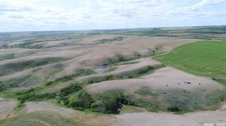Photo 14: Central Butte - Mackow Land in Enfield: Farm for sale (Enfield Rm No. 194)  : MLS®# SK862931