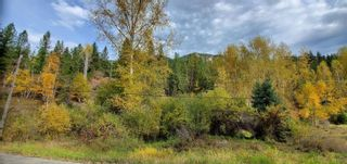 Photo 26: 789 Shuswap River Drive, in Lumby: House for sale : MLS®# 10240114