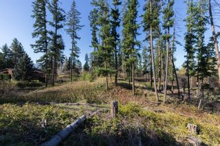 Photo 11: 3281 Hall Road, in Kelowna: Vacant Land for sale : MLS®# 10232100