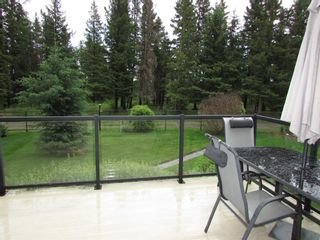 Photo 47: 1305 2nd ST: Sundre Detached for sale : MLS®# A1120309