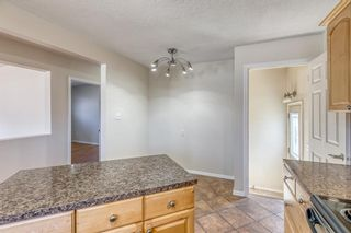 Photo 9: 1008 32 Street SE in Calgary: Albert Park/Radisson Heights Detached for sale : MLS®# A1090391