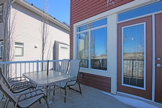 Photo 16:  in Calgary: Royal Oak Detached for sale : MLS®# A1087118