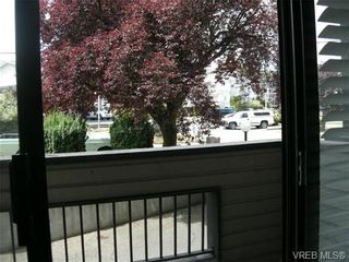 Photo 14: 210 1619 Morrison St in VICTORIA: Vi Jubilee Condo for sale (Victoria)  : MLS®# 665023