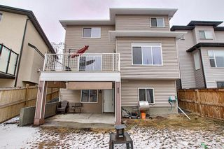 Photo 44: 6 Baysprings Terrace SW: Airdrie Detached for sale : MLS®# A1092177