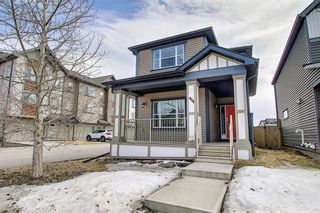 Photo 42: 484 COPPERPOND BV SE in Calgary: Copperfield House for sale : MLS®# C4292971