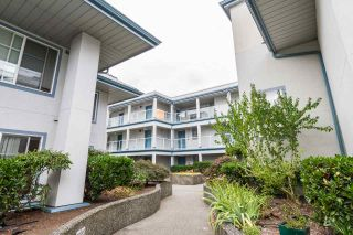 Photo 3: 104 11519 BURNETT Street in Maple Ridge: East Central Condo for sale : MLS®# R2174212