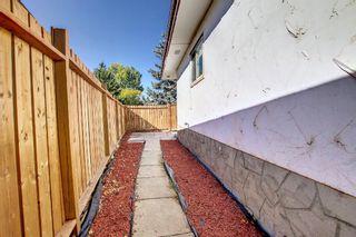 Photo 46: 3036 Doverville Crescent SE in Calgary: Dover Semi Detached for sale : MLS®# A1148570