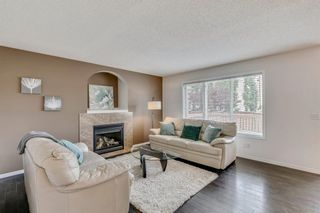 Photo 16: 18 Copperfield Crescent SE in Calgary: Copperfield Detached for sale : MLS®# A1141643