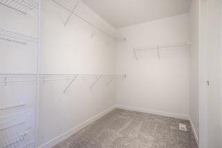 Photo 29: 173 Springwater Road in Winnipeg: Bridgwater Lakes Residential for sale (1R)  : MLS®# 202012035
