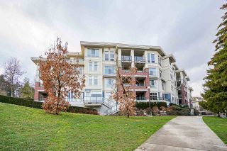 """Photo 34: 205 245 ROSS Drive in New Westminster: Fraserview NW Condo for sale in """"GROVE AT VICTORIA HILL"""" : MLS®# R2543639"""