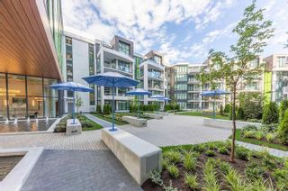 Photo 23:  in Vancouver: UBC Condo for rent (Vancouver West)  : MLS®# AR145