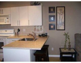"""Photo 3: 325 528 ROCHESTER Avenue in Coquitlam: Coquitlam West Condo for sale in """"AVE"""" : MLS®# V878269"""