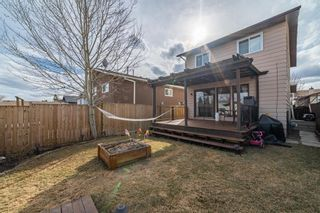 Photo 31: 49 Templeson Crescent NE in Calgary: Temple Detached for sale : MLS®# A1089563