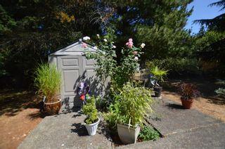 Photo 32: 776 Anderton Rd in Comox: CV Comox Peninsula House for sale (Comox Valley)  : MLS®# 882432