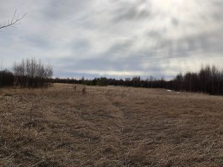Photo 4: 79.84 AC RR225 north of Twp 572: Rural Sturgeon County Rural Land/Vacant Lot for sale : MLS®# E4238538