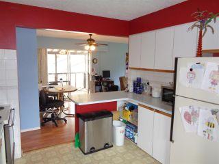 Photo 12: 615 HEMLOCK Avenue in Hope: Hope Center House for sale : MLS®# R2484356