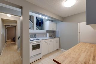 Photo 19: 196 Edgedale Way NW in Calgary: Edgemont Detached for sale : MLS®# A1147191