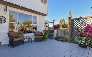 Photo 30: 19 Coral Springs Green NE in Calgary: Coral Springs Detached for sale : MLS®# A1064620