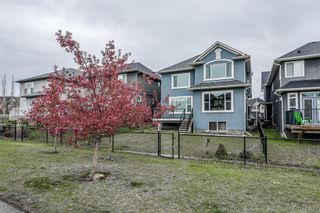 Photo 40: 57 CRANARCH Place SE in Calgary: Cranston Detached for sale : MLS®# A1112284