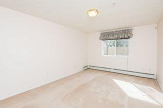 Photo 20: 123 10511 42 Avenue in Edmonton: Zone 16 Condo for sale : MLS®# E4236699
