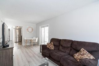 Photo 7: 210 Harvard Avenue West in Winnipeg: West Transcona Residential for sale (3L)  : MLS®# 202029922