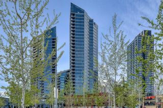 Photo 31: 2907 225 11 Avenue SE in Calgary: Beltline Apartment for sale : MLS®# A1109054
