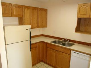Photo 9: 4 23580 Dewdney Trunk Road in St George's Village: Home for sale : MLS®# V975203