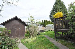 Photo 13: 23405 SANDPIPER AVENUE in Maple Ridge: Cottonwood MR House for sale : MLS®# R2360174