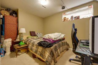 Photo 31: 39 DOUGLAS Lane: Leduc House for sale : MLS®# E4264128