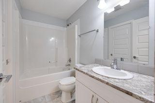 Photo 16: 11235 52 Street in Edmonton: Zone 09 House for sale : MLS®# E4252061